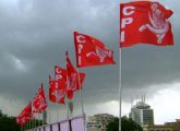 cpi-flag_3
